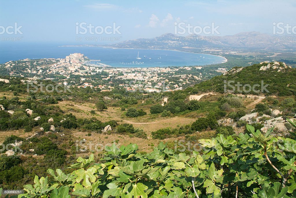 The  coast of Calvi on Corsica island royalty-free stock photo