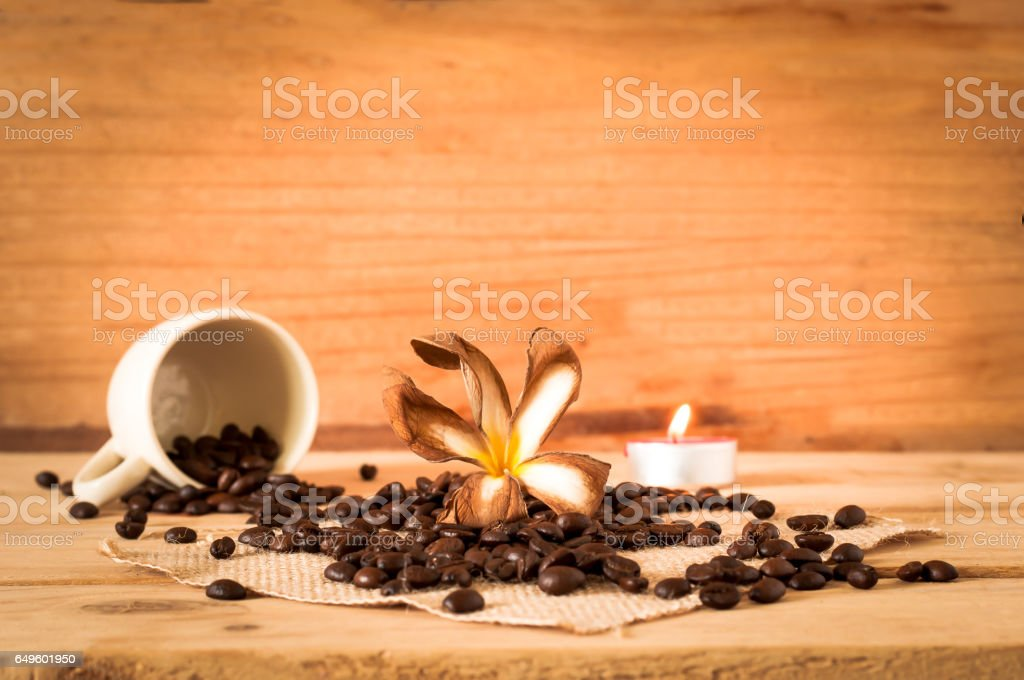 the coffee seed out of the white cup with white dried plumeria on wooden table stock photo