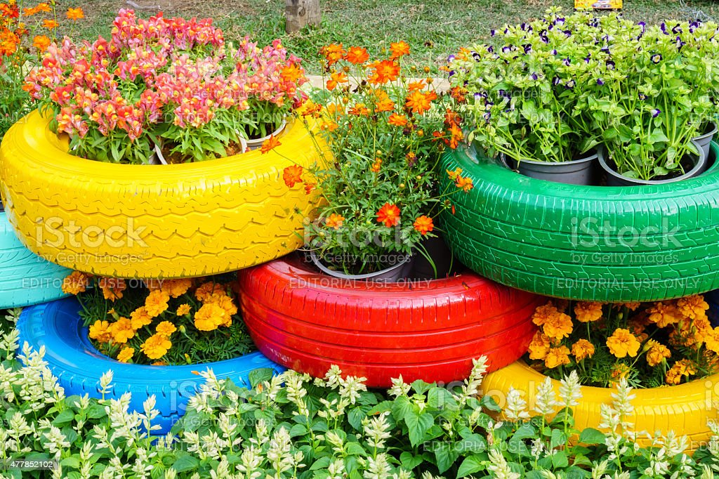 The colorful flowers and tire pots stock photo