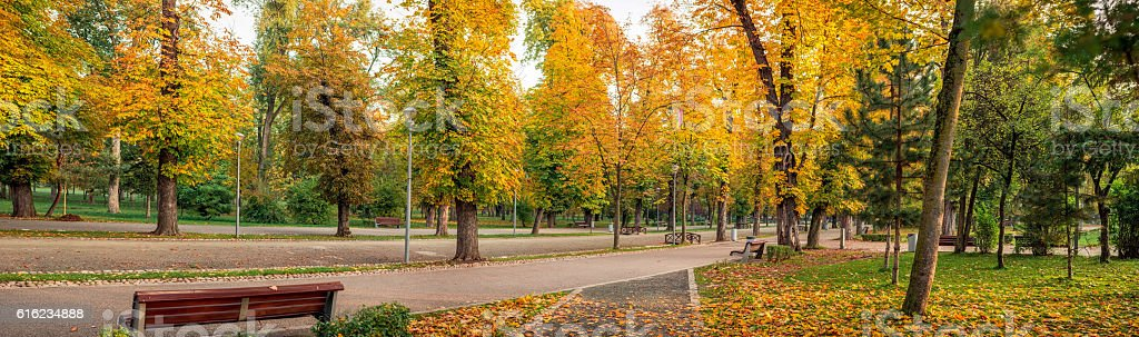 The colors of autumn in central park in Cluj, Romania stock photo