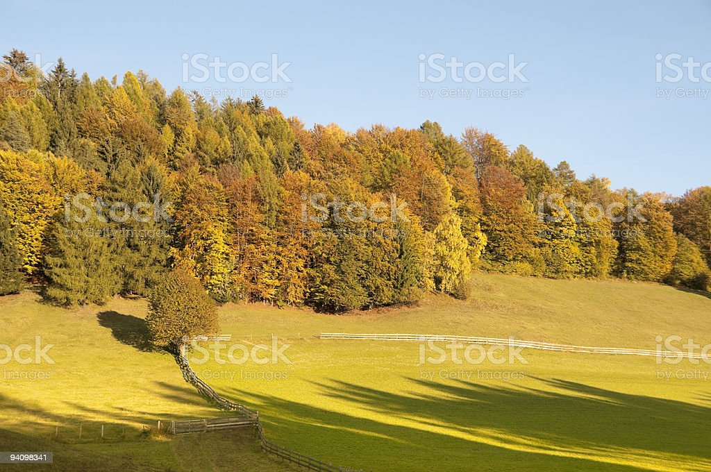 The colors of autumn stock photo