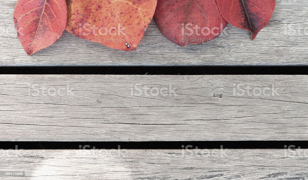 The colour leaves and wooden floor royalty-free stock photo