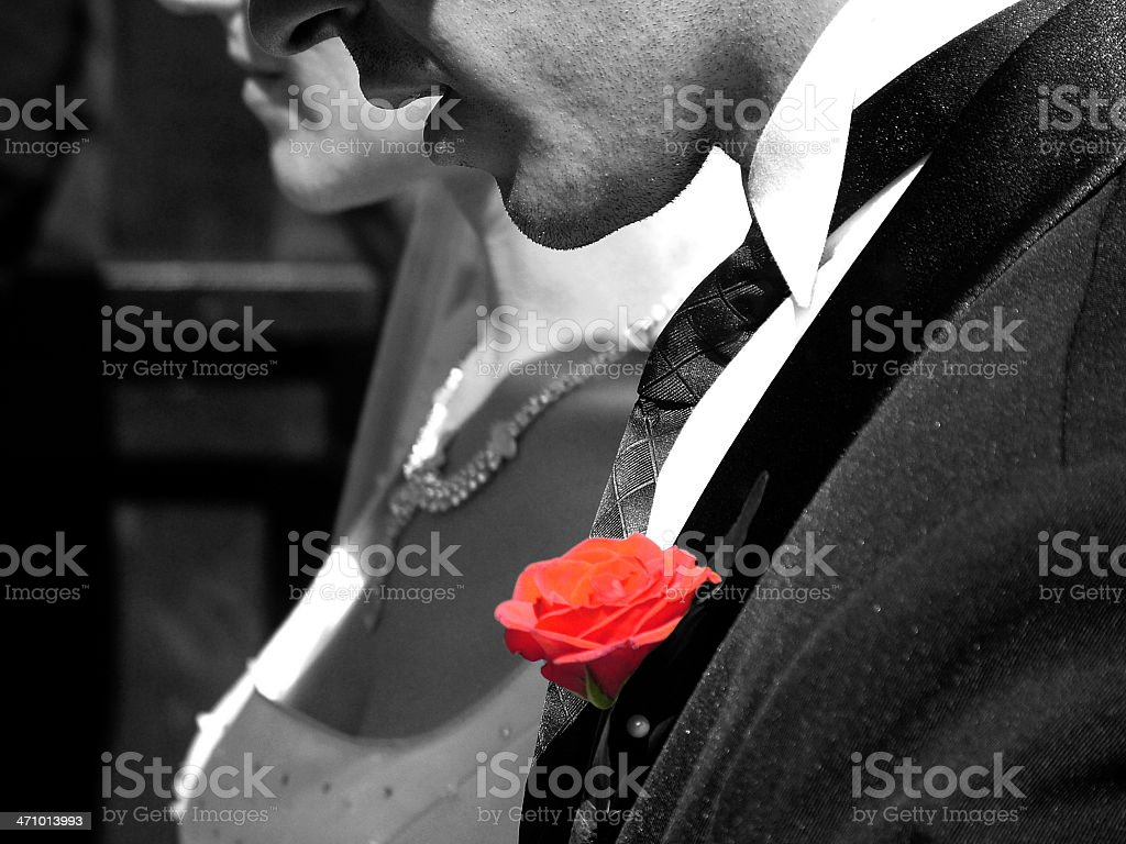 the colour of love royalty-free stock photo