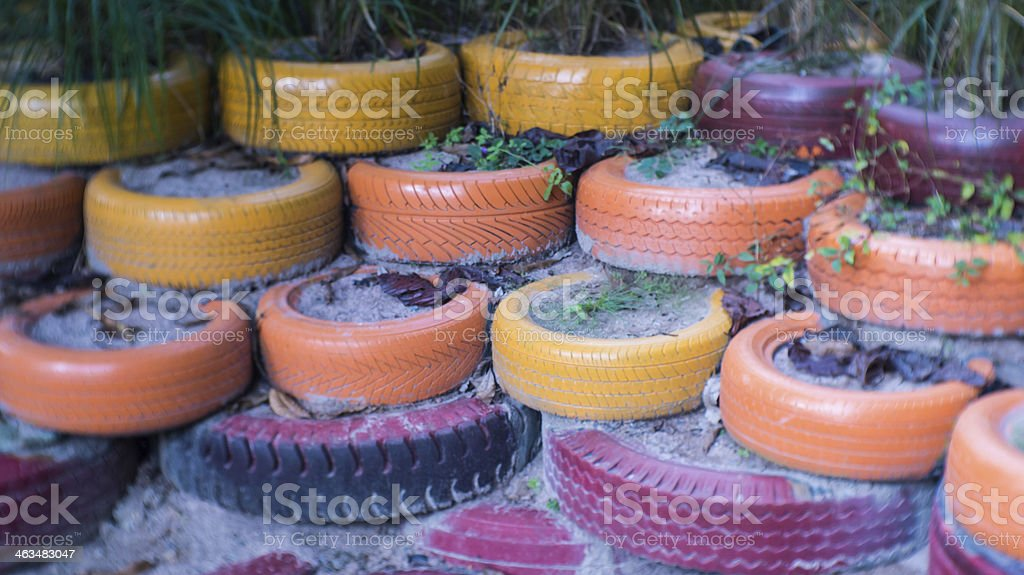 The colourful used tyre with plant stock photo