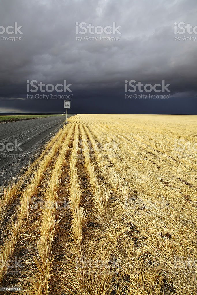 The countryside in state of Montana begins stock photo