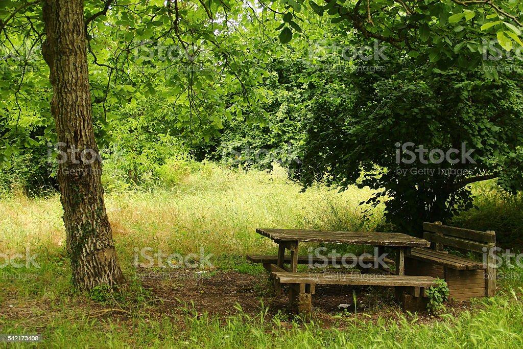 The countryside near Blera, in Italy stock photo