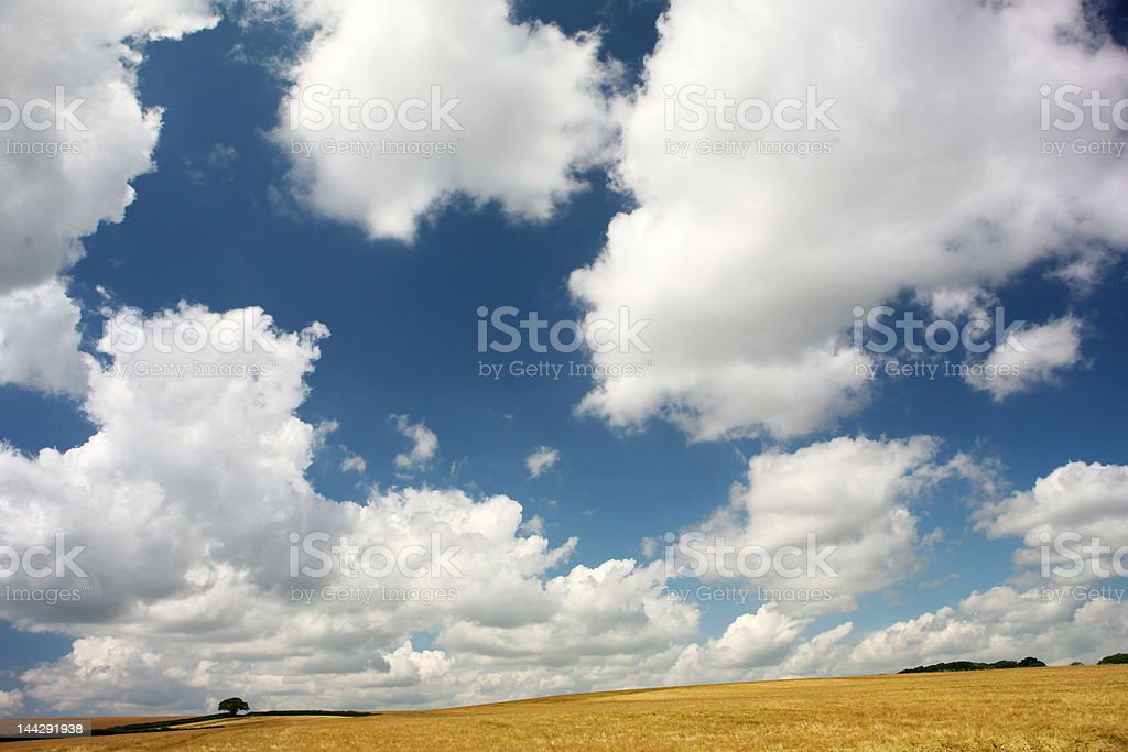 The countryside royalty-free stock photo