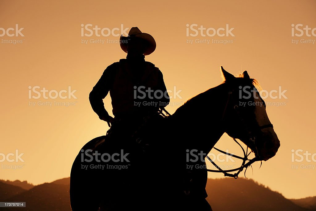 The Cowboy stock photo