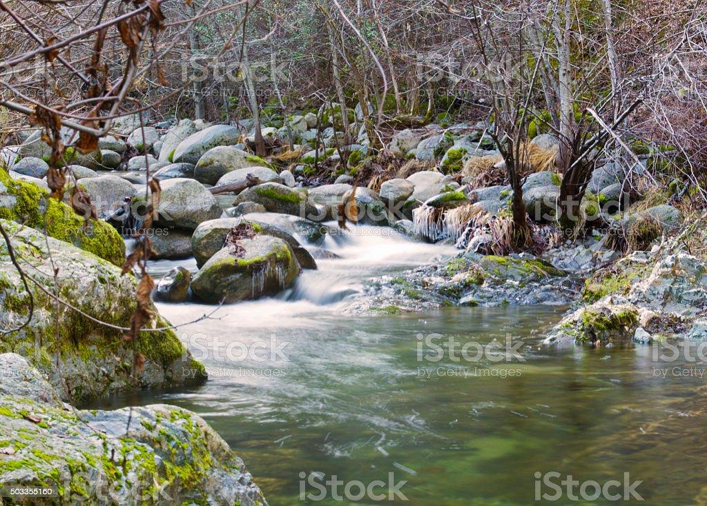 The Creek stock photo