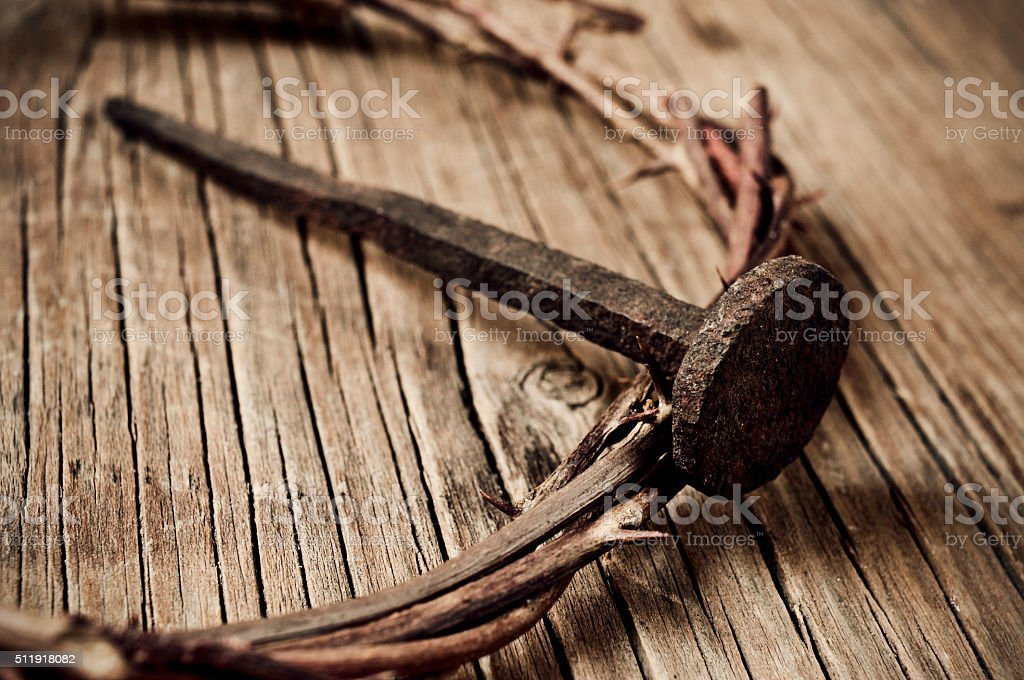the crown of thorns stock photo