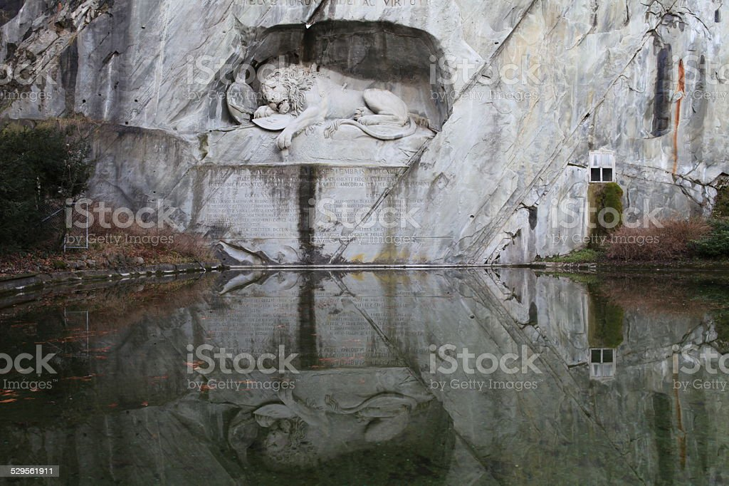 The crying lion stock photo
