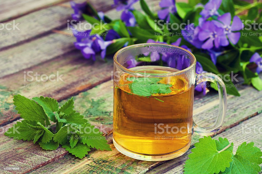 The cup of melissa herbal tea on a wooden table stock photo