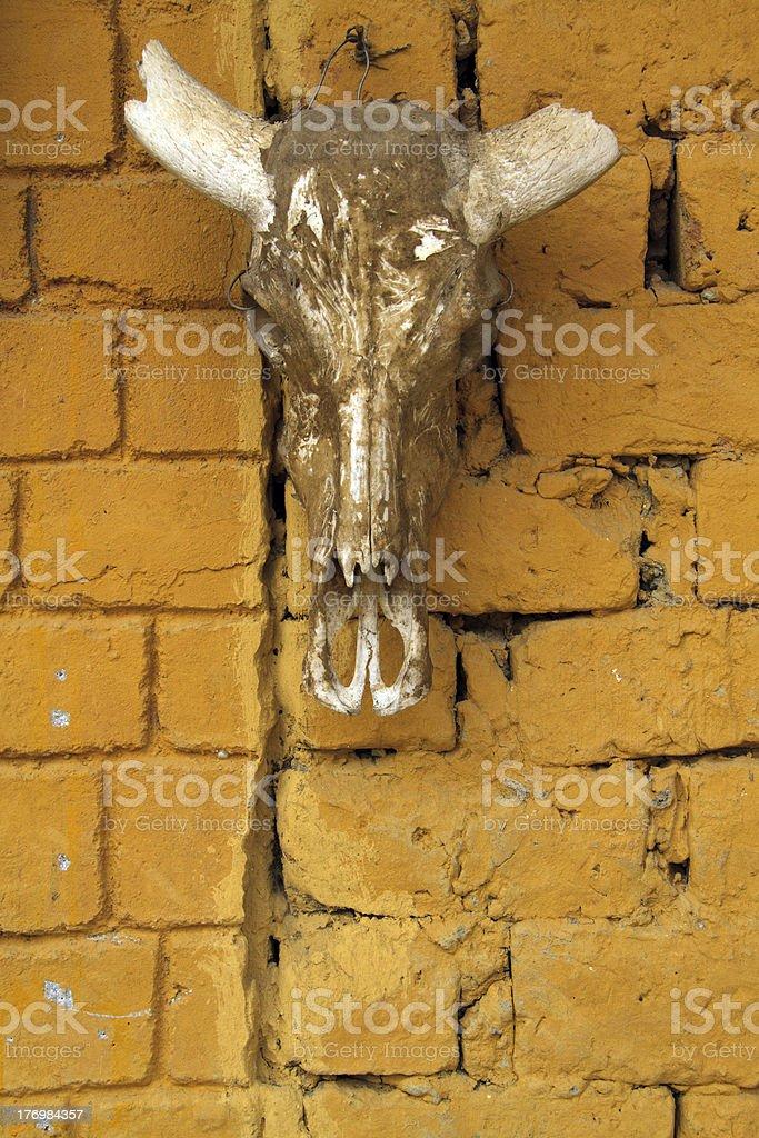 the decoration stock photo