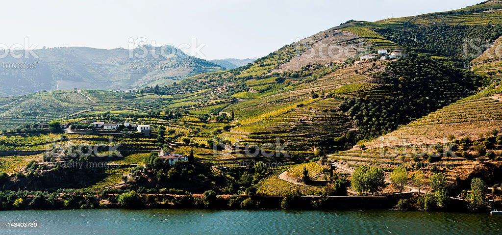 The Douro river royalty-free stock photo