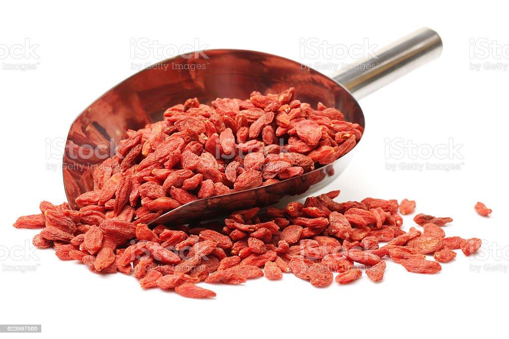 The dried fruit of medlar stock photo