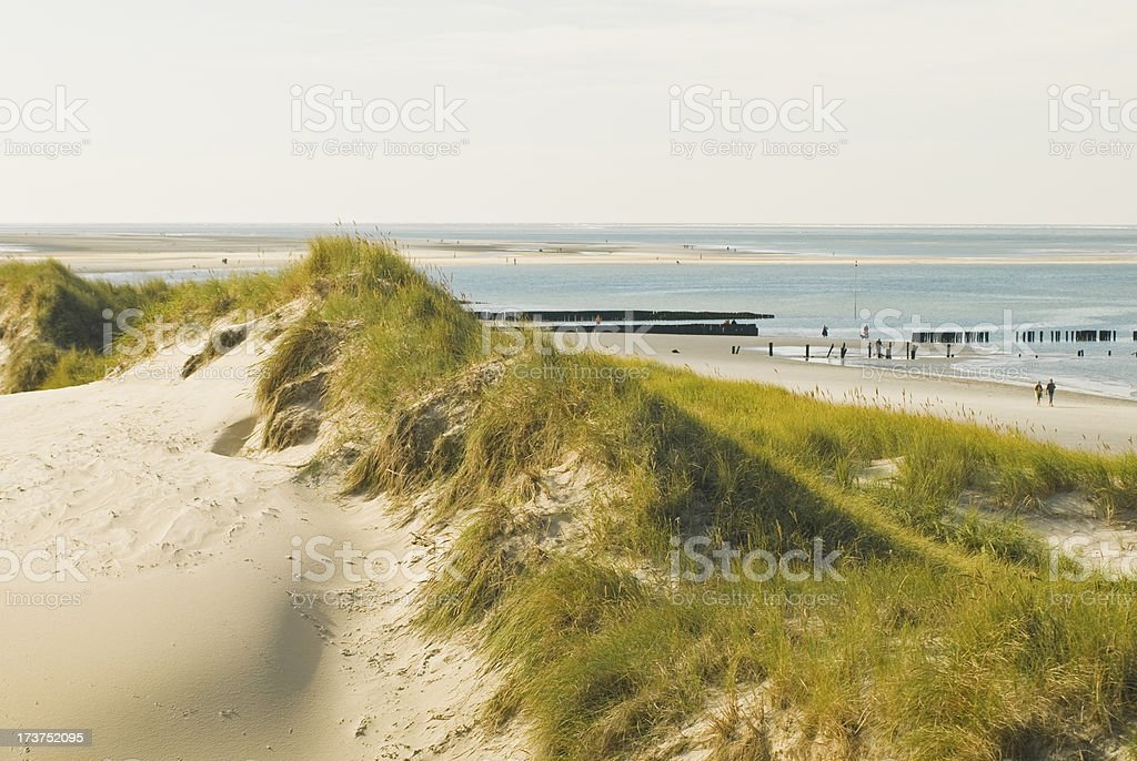The dune with beach stock photo
