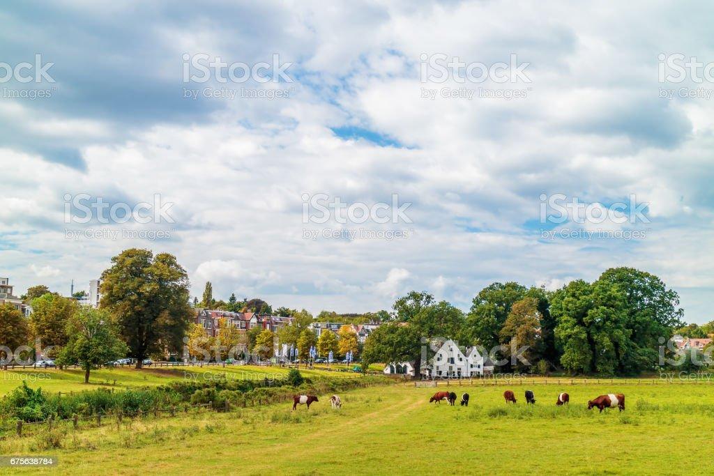 The Dutch Sonsbeek city park in Arnhem stock photo