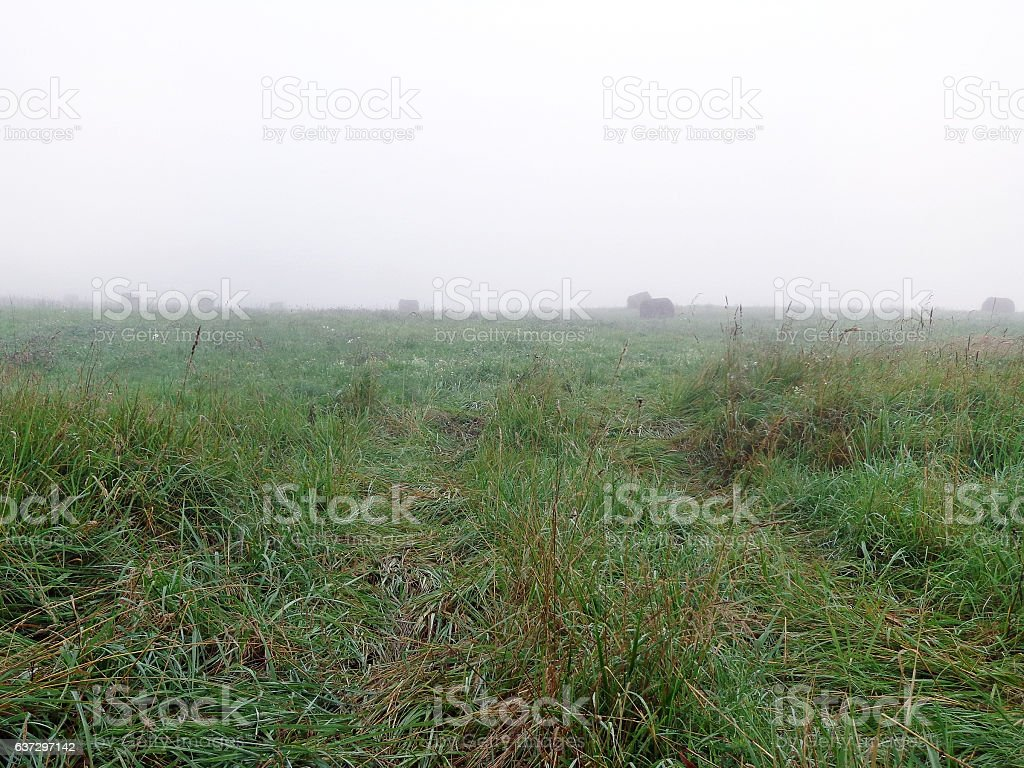 The early foggy morning stock photo