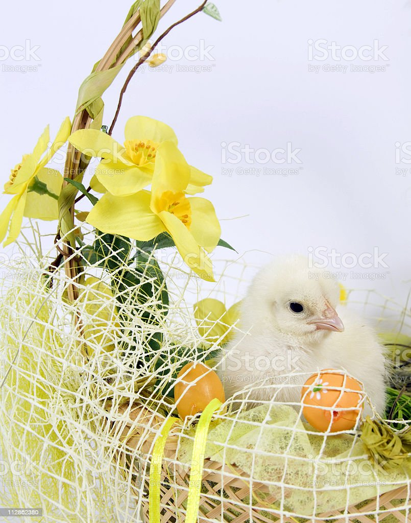 The Easter Basket royalty-free stock photo
