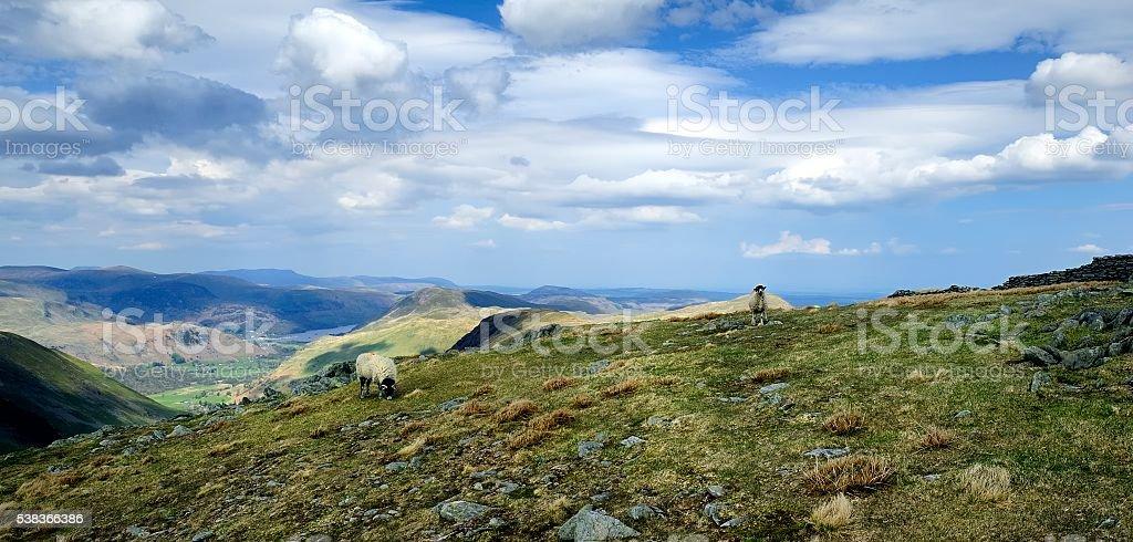 The Eastern Fells from Thornthwaite Crag stock photo