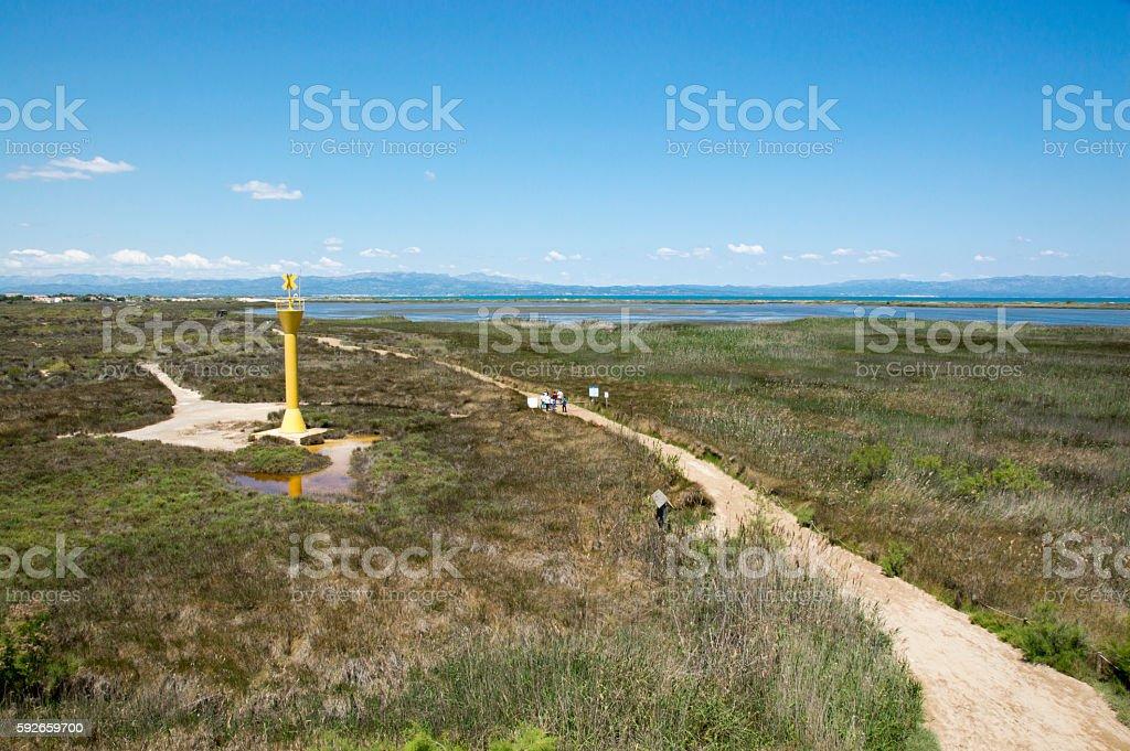 The Ebro Delta stock photo