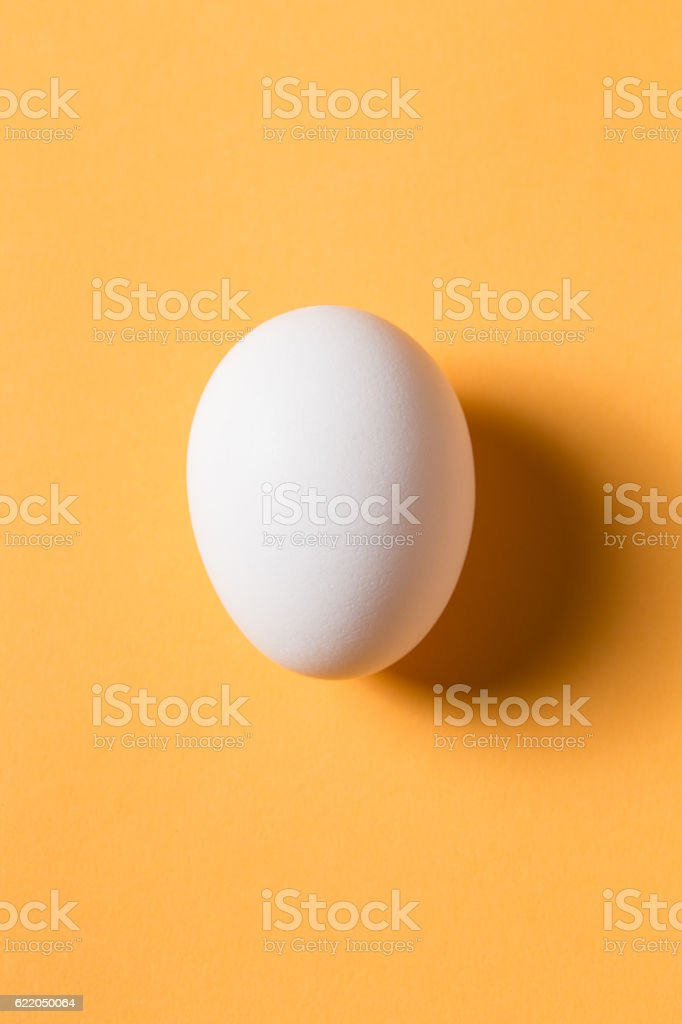 The egg is on the yellow background. stock photo