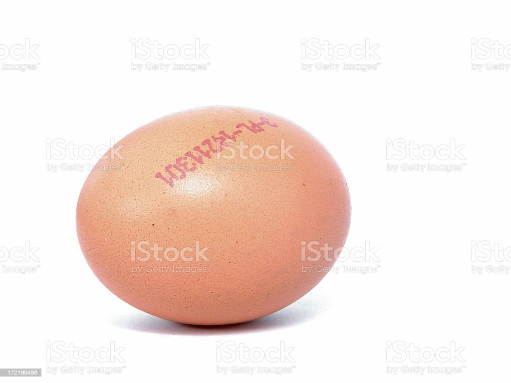 The egg royalty-free stock photo