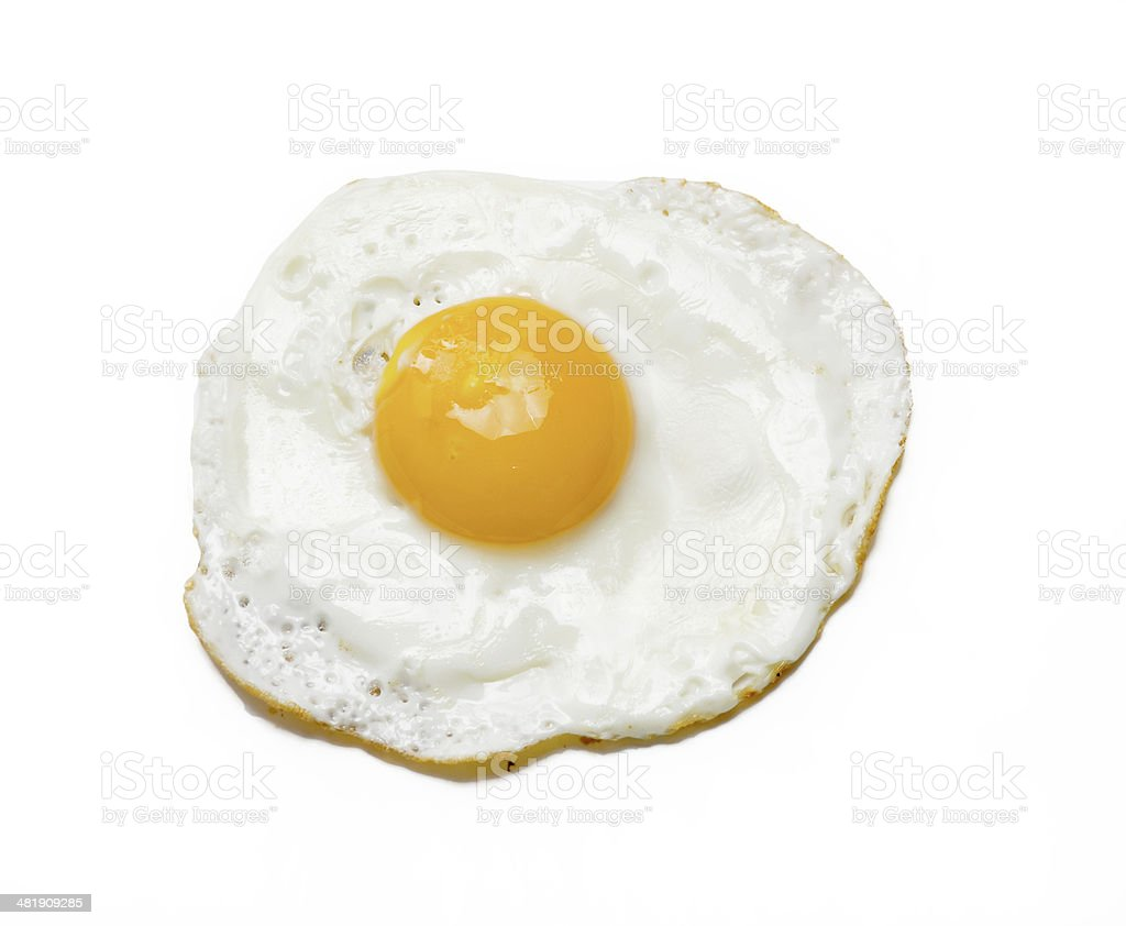 The egg. stock photo