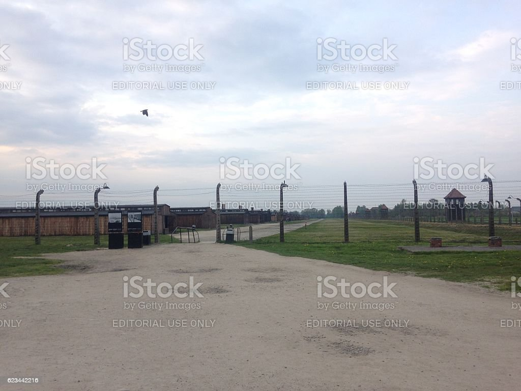 The electrical fence that surrounds the camp Auschwitz II Birkenau stock photo