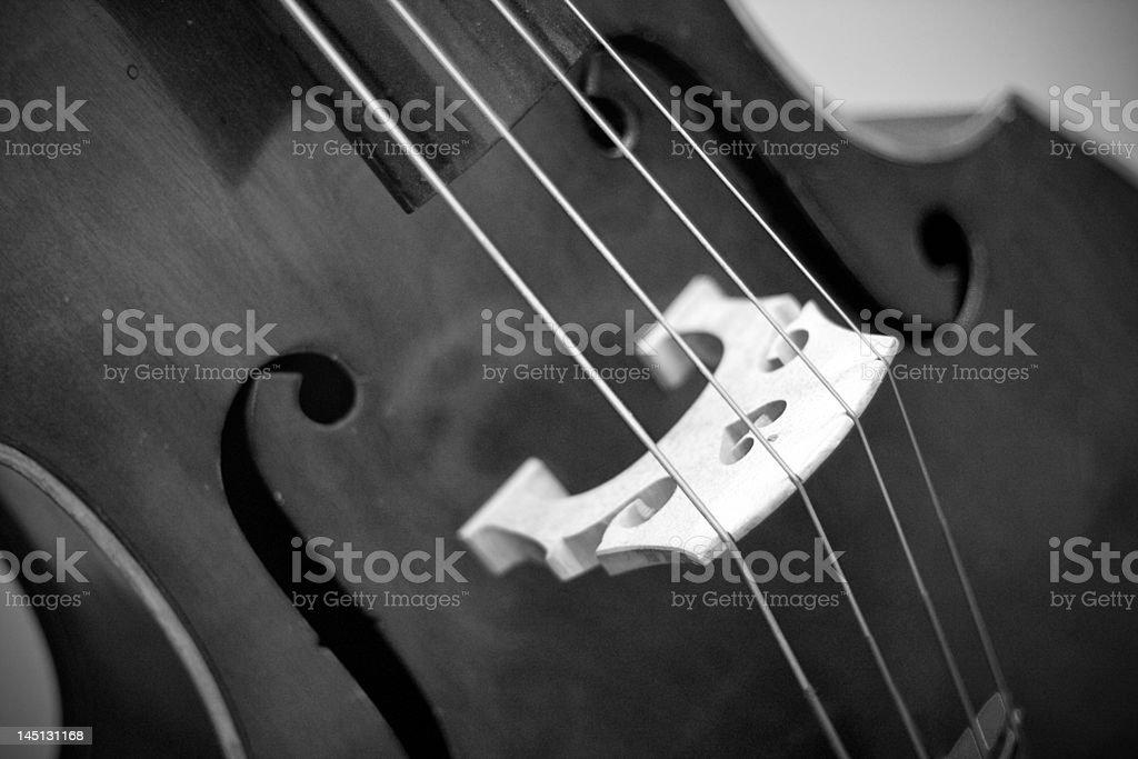 The Elegant Cello royalty-free stock photo