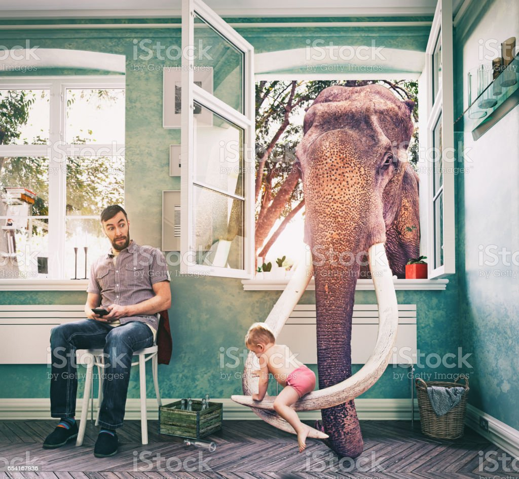 The elephant and the boy stock photo