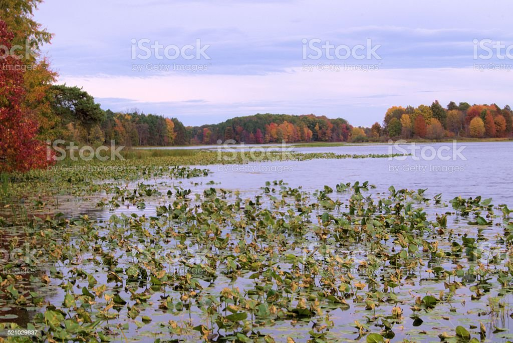 The end of summer. stock photo