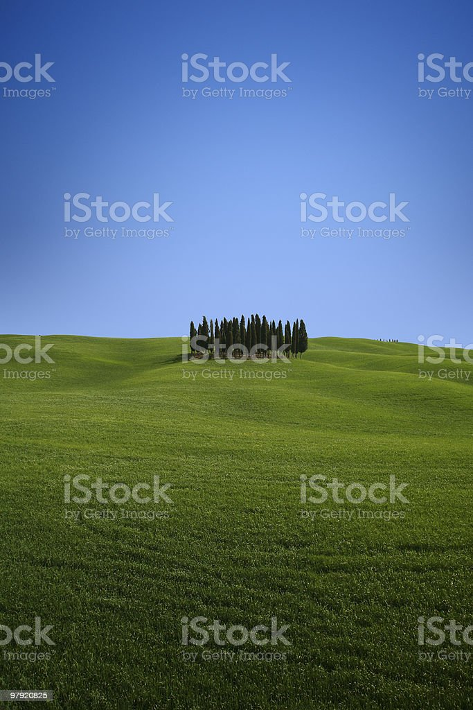 The essence of Tuscany. royalty-free stock photo