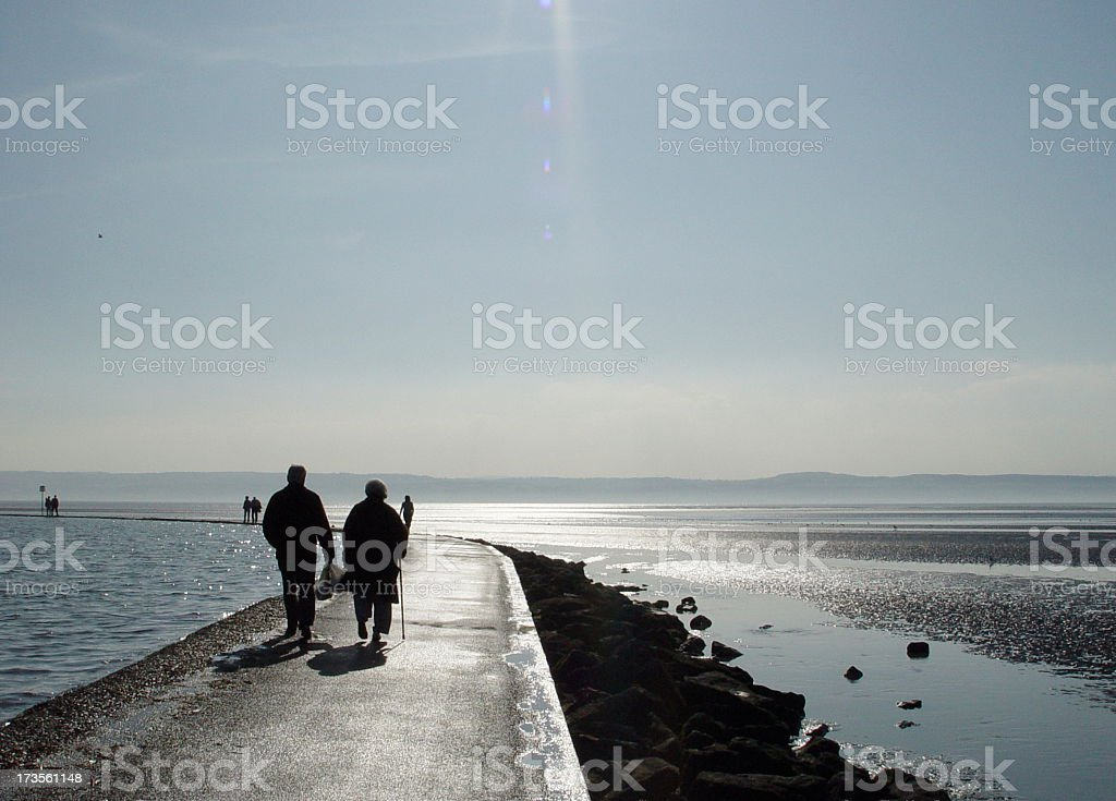 The Estuary royalty-free stock photo