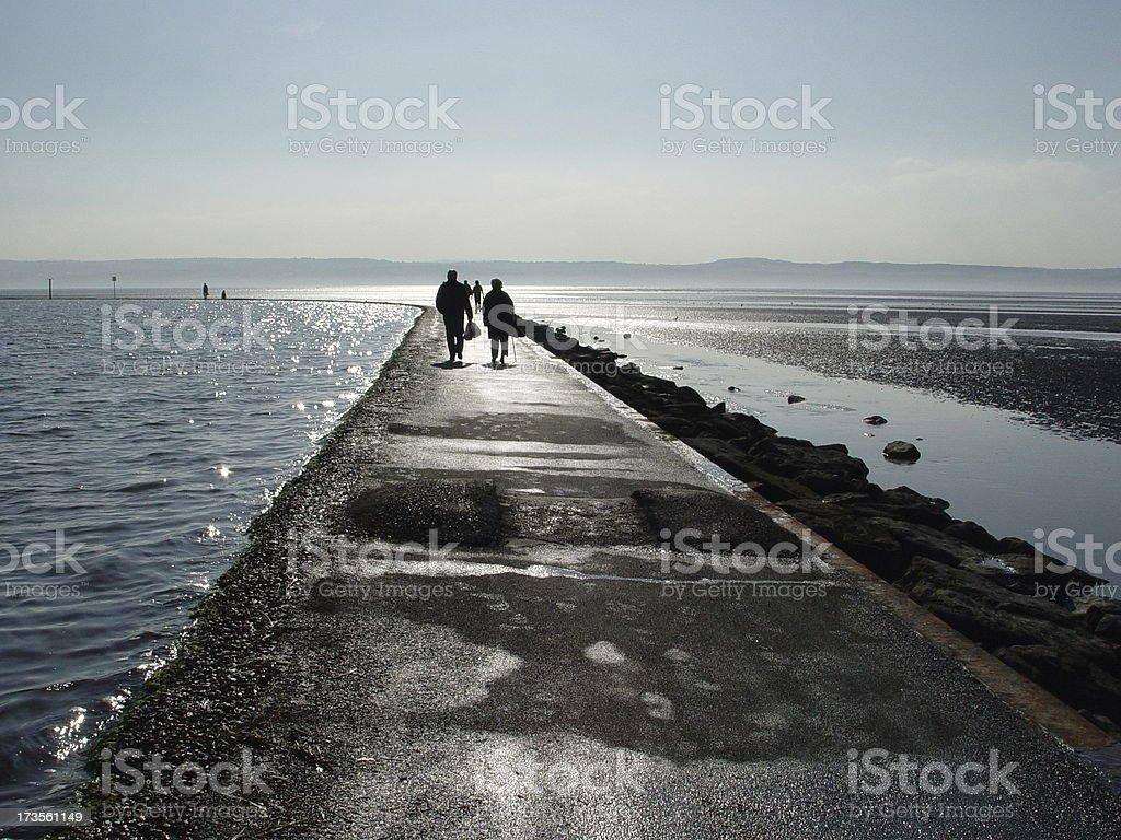 The Estuary royalty-free stock photo