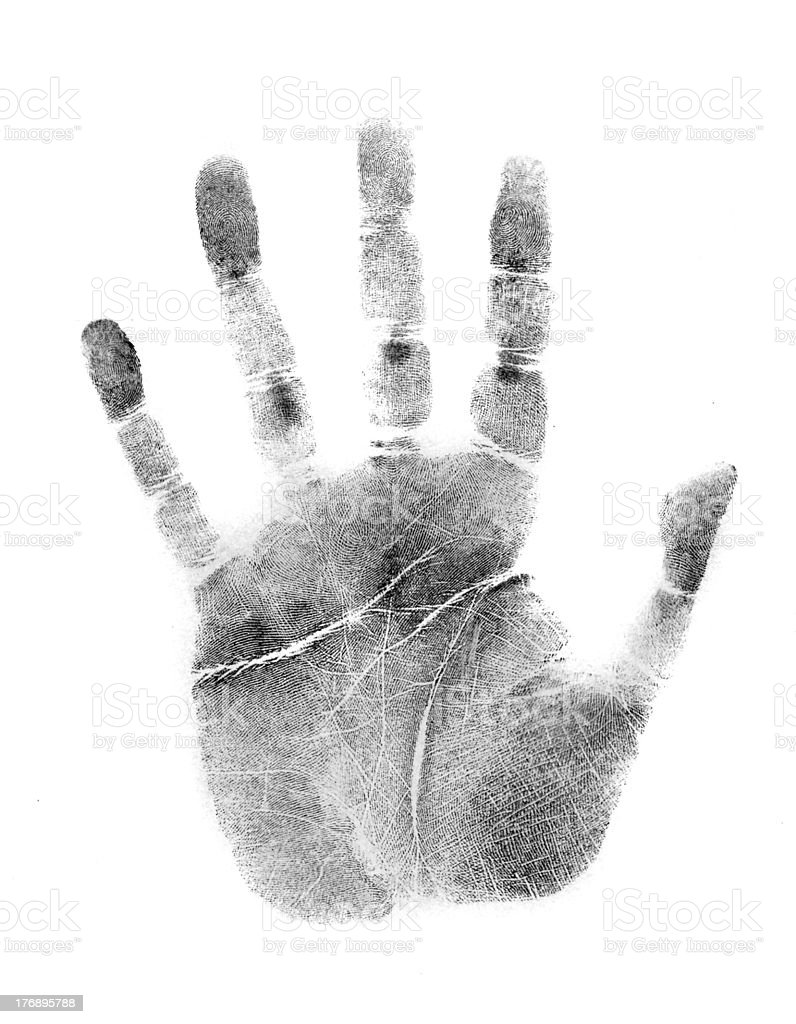 The examination of fingerprints stock photo