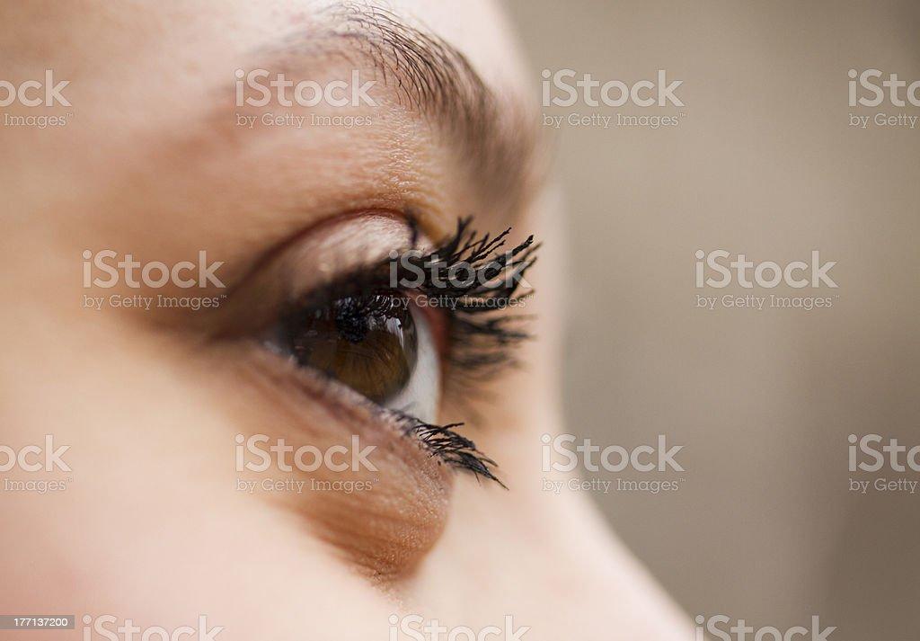 The eye royalty-free stock photo