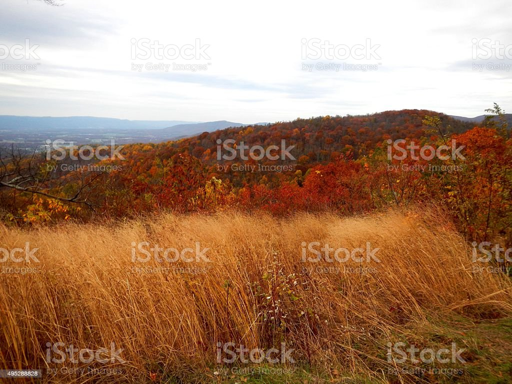 The Fall Colors of Virginia's Skyline Drive stock photo