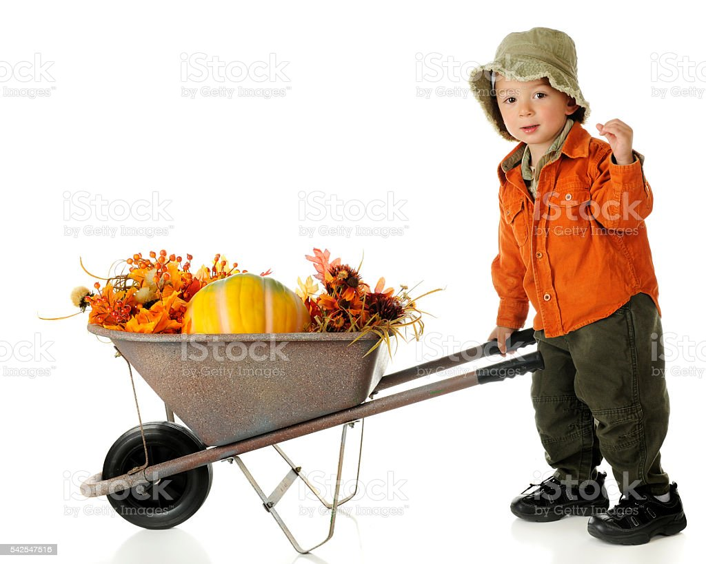 The Fall Push stock photo