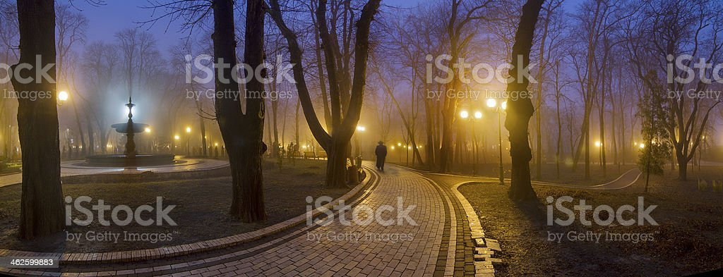 The famous footpath in Mariinsky Park stock photo