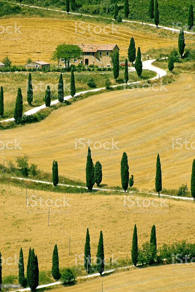 The famous winding road lined with cypresses in Tuscany stock photo
