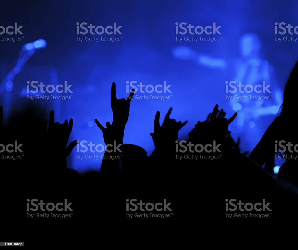 The fans. Concert. royalty-free stock photo