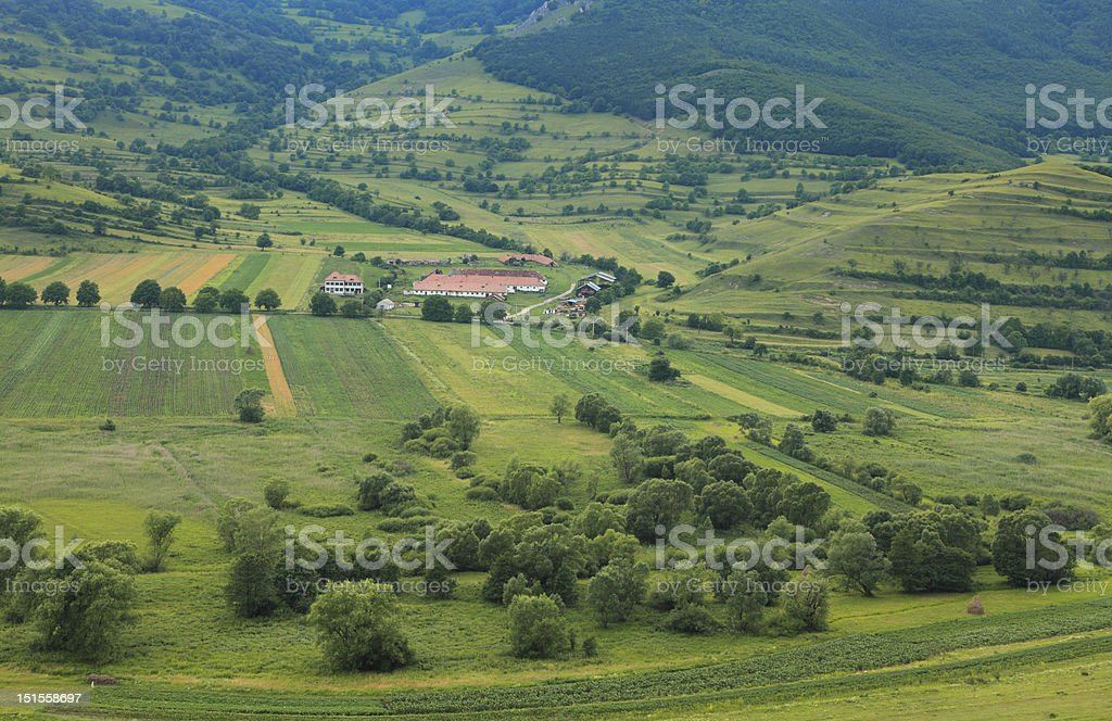 The farm stock photo