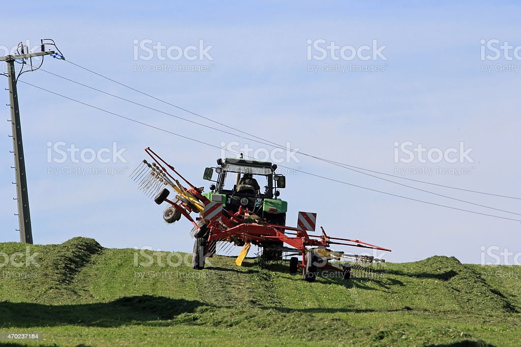 The farm work during the summer stock photo