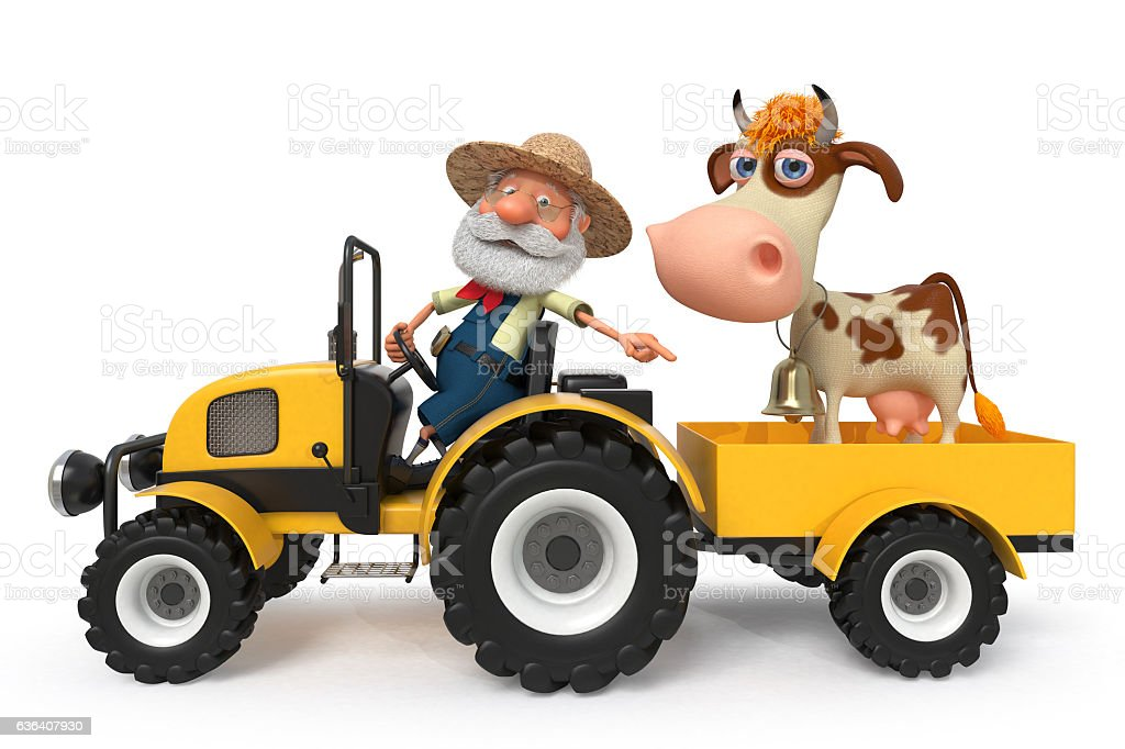 the farmer with a cow goes on the tractor stock photo