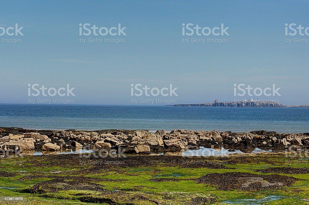 The Farne Islands stock photo