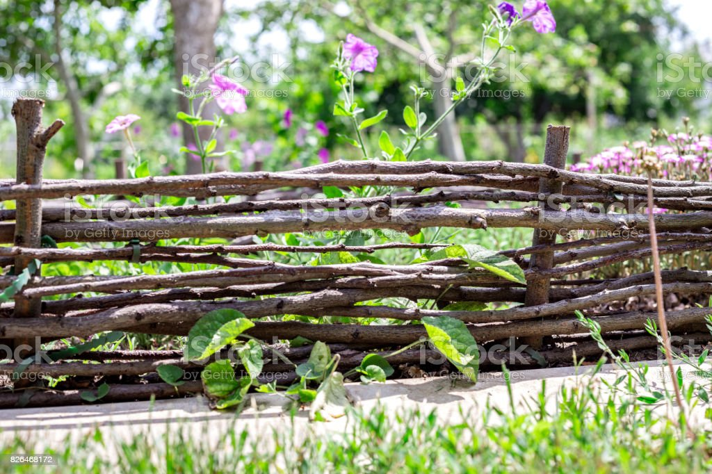 The fence from willow branches in the garden stock photo