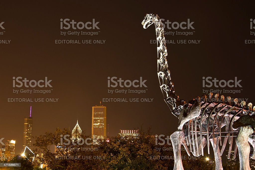 The Field museum of natural history - Chicago stock photo