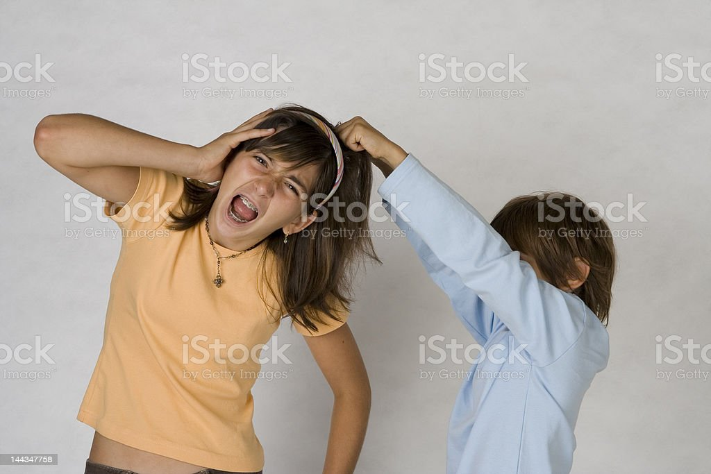 The Fight royalty-free stock photo