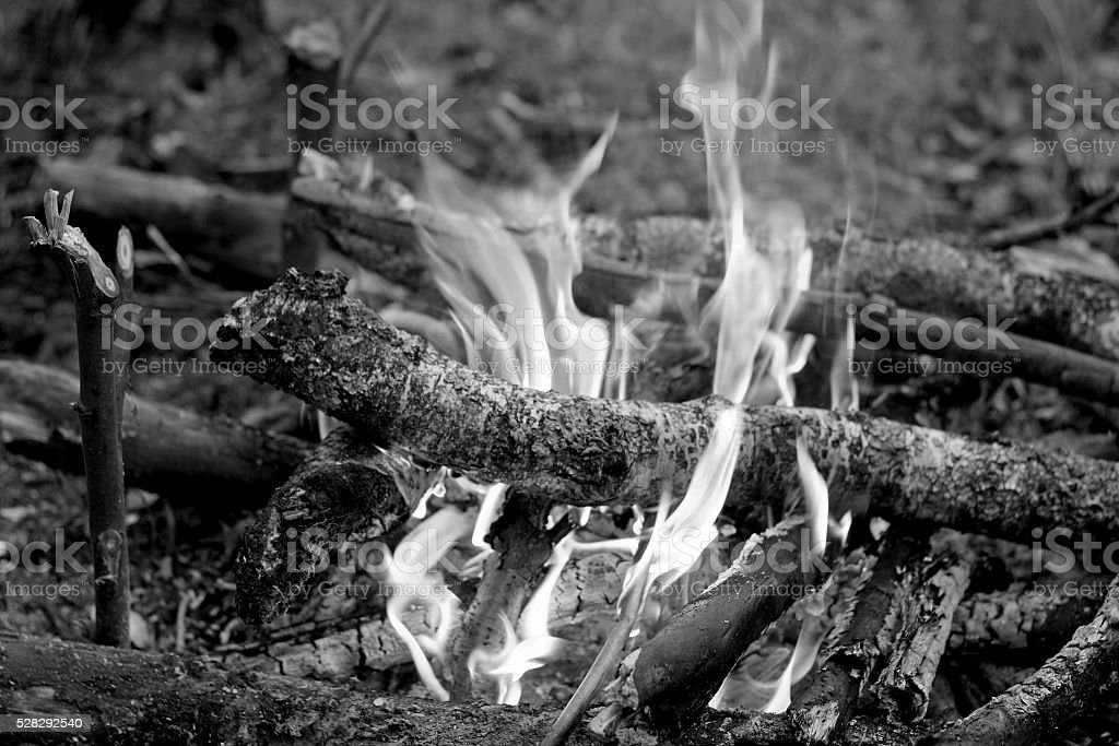 The fire. A monochrome image. stock photo